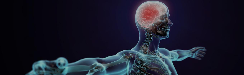 Autonomic Nerve Testing New York – Nerve Damage Test Midtown – Nerve Test Bronx