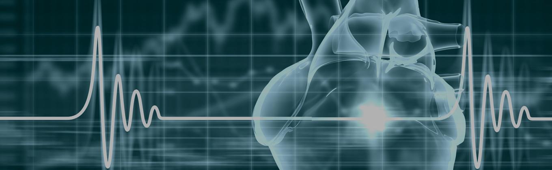 Cardiovascular Fitness Test New York – Cardiovascular Profile Test Manhattan – Queens